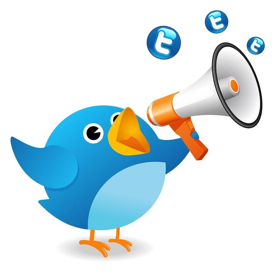 Ganar dinero en twitter es posible 1